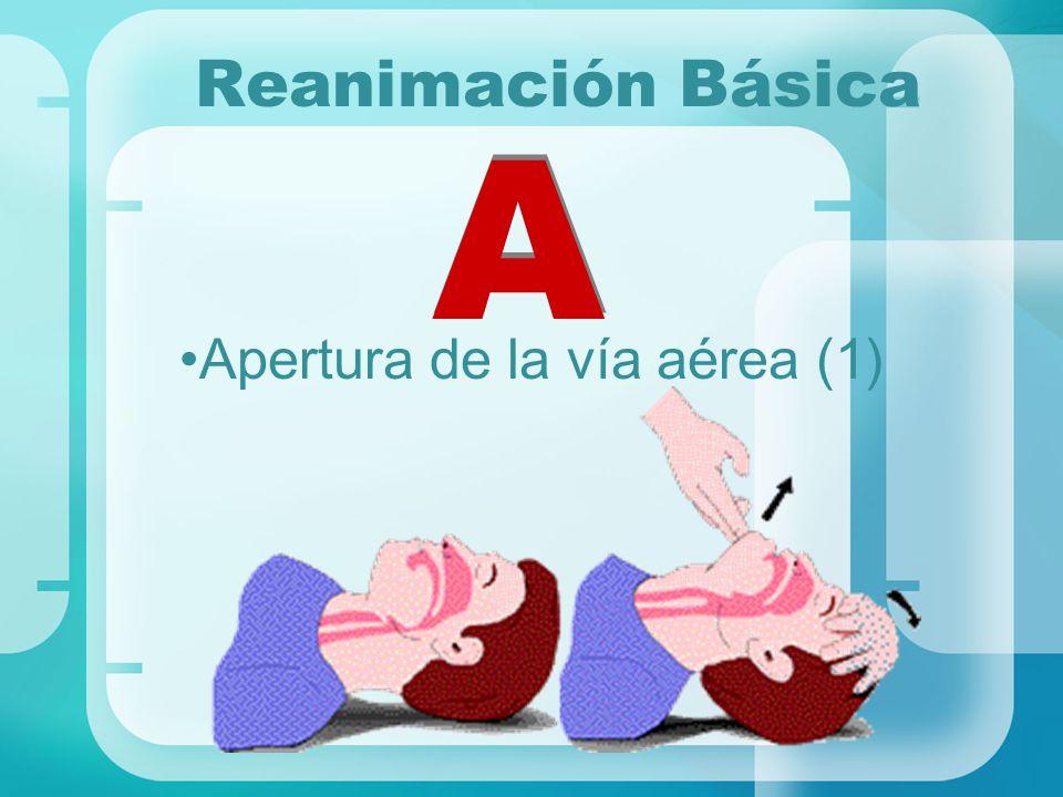 Reanimación Básica A A Apertura de la vía aérea (1)