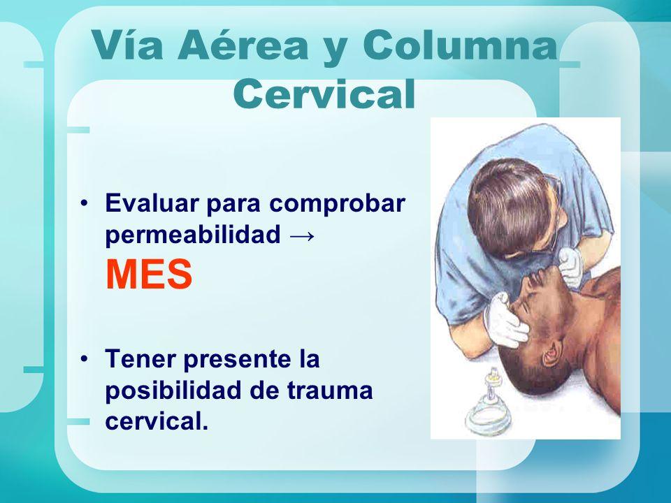 Vía Aérea y Columna Cervical Evaluar para comprobar permeabilidad MES Tener presente la posibilidad de trauma cervical.