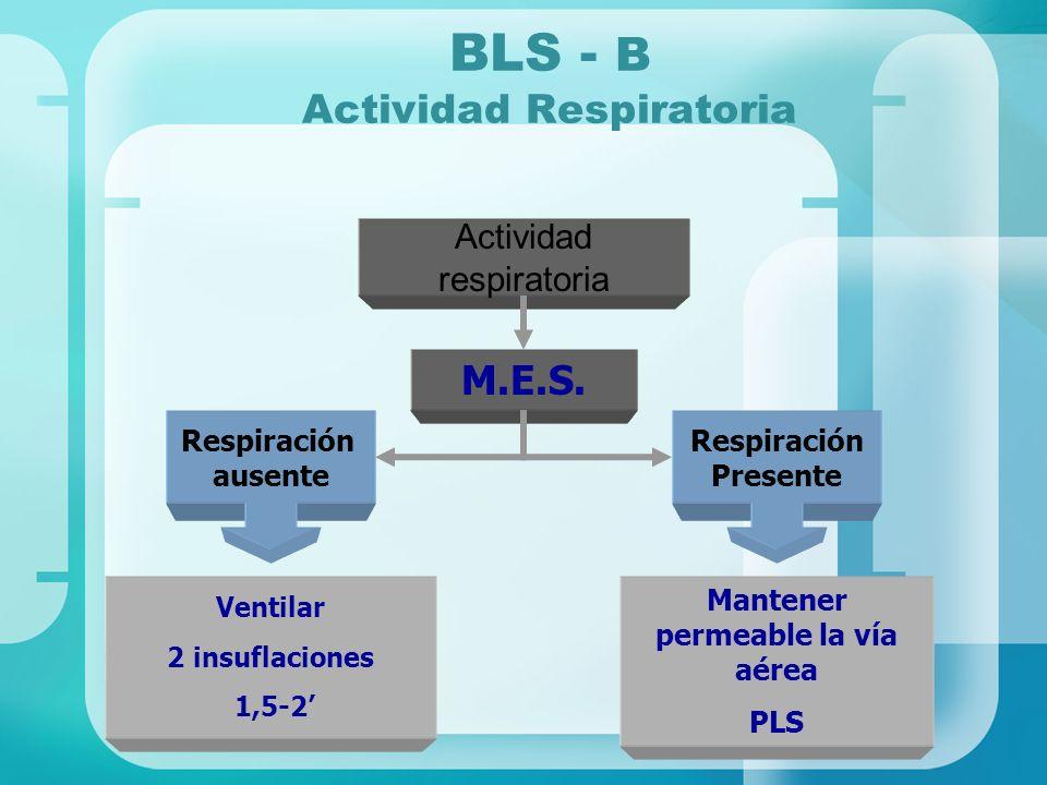 BLS - B Actividad Respiratoria Actividad respiratoria M.E.S. Respiración ausente Respiración Presente Ventilar 2 insuflaciones 1,5-2 Mantener permeabl
