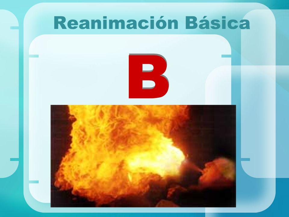 Reanimación Básica B B