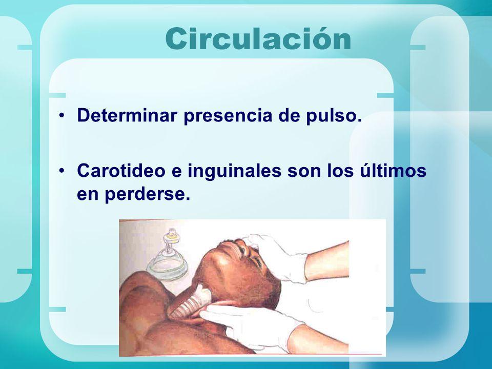 Circulación Determinar presencia de pulso. Carotideo e inguinales son los últimos en perderse.