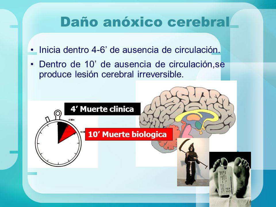 Daño anóxico cerebral Inicia dentro 4-6 de ausencia de circulación. Dentro de 10 de ausencia de circulación,se produce lesión cerebral irreversible. 4