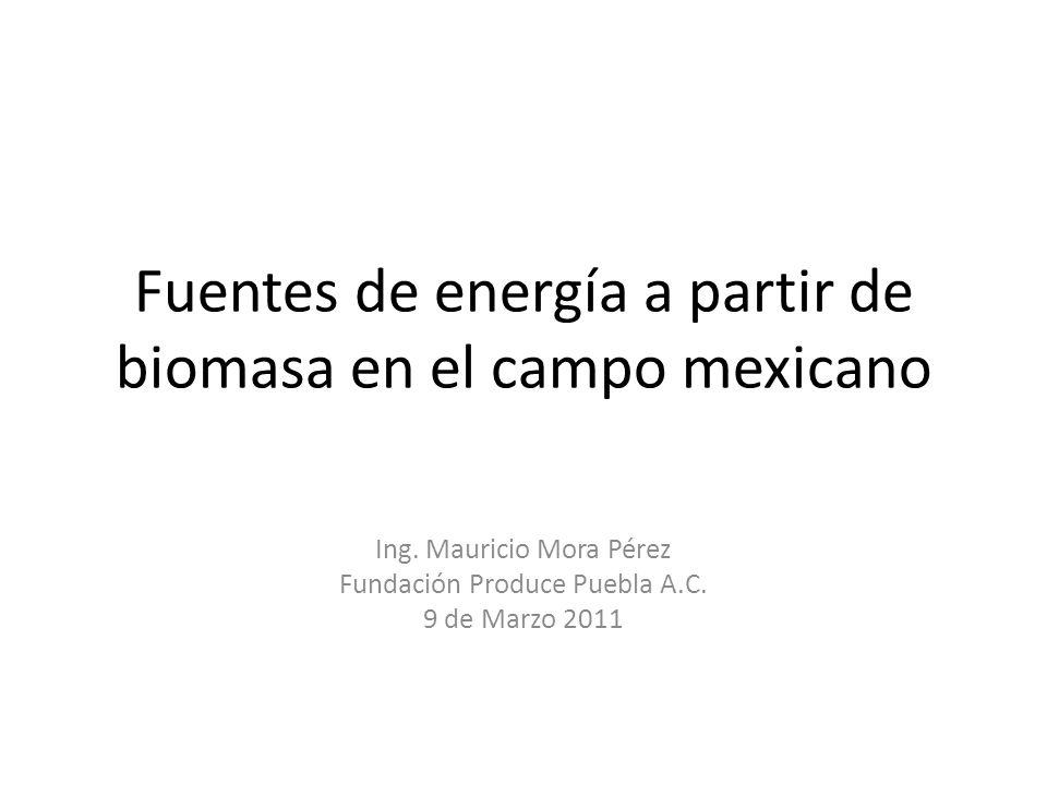 Fuentes de energía a partir de biomasa en el campo mexicano Ing. Mauricio Mora Pérez Fundación Produce Puebla A.C. 9 de Marzo 2011