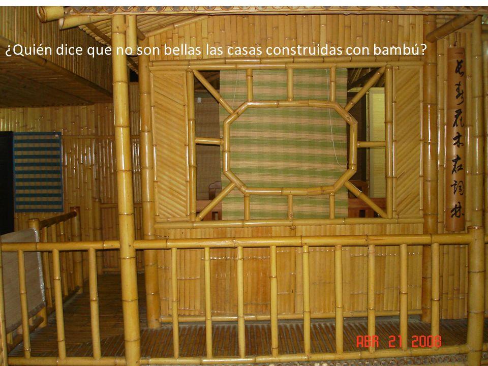 ¿Quién dice que no son bellas las casas construidas con bambú?