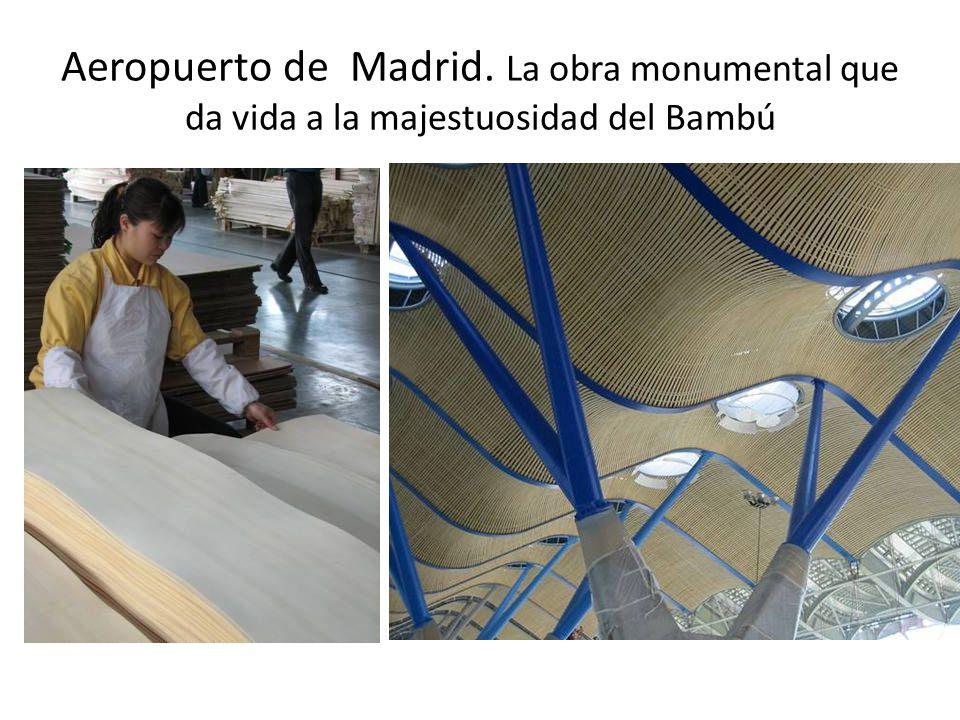 Aeropuerto de Madrid. La obra monumental que da vida a la majestuosidad del Bambú