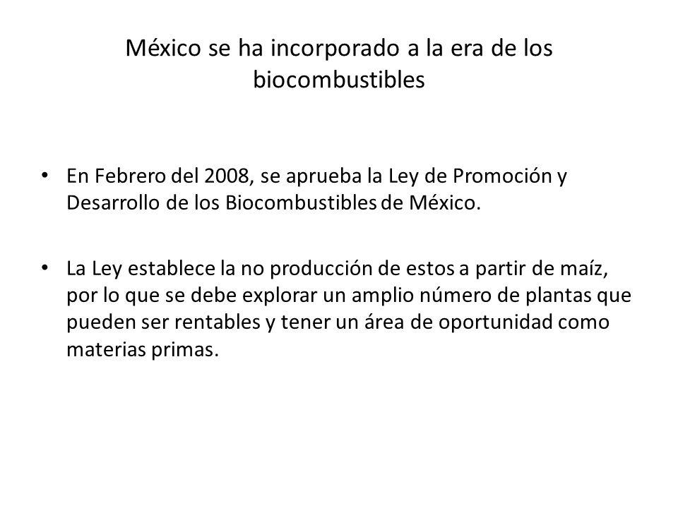México se ha incorporado a la era de los biocombustibles En Febrero del 2008, se aprueba la Ley de Promoción y Desarrollo de los Biocombustibles de Mé