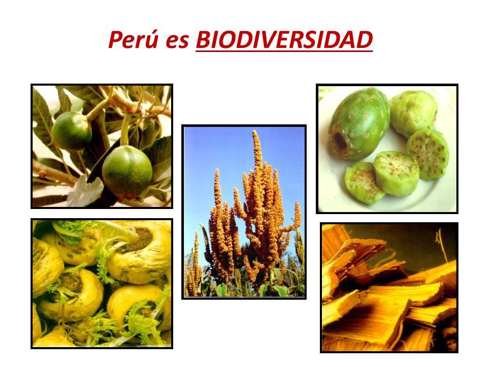 Perú es BIODIVERSIDAD