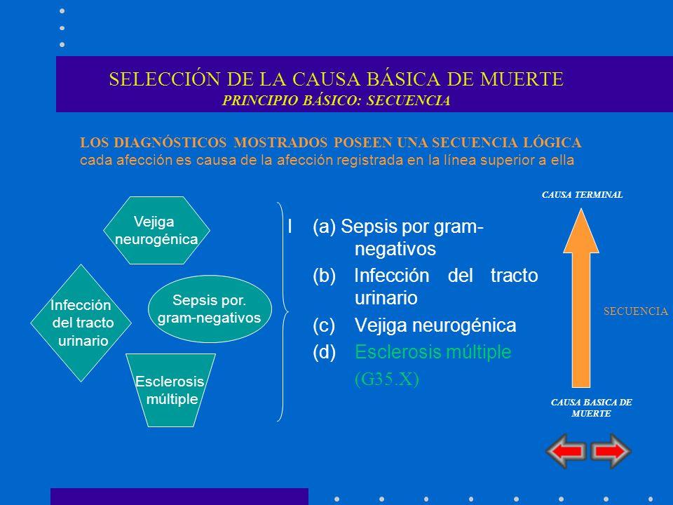 SELECCIÓN DE LA CAUSA BÁSICA DE MUERTE PRINCIPIO BÁSICO: SECUENCIA I(a) Sepsis por gram- negativos (b) Infección del tracto urinario (c) Vejiga neurog