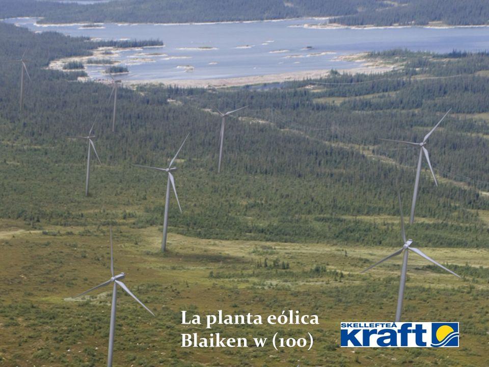 Blaiken La planta eólica Blaiken w (100)