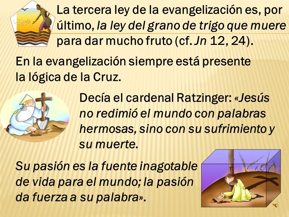 Esta ley nos protege del dejarnos llevar por el des á nimo en nuestro compromiso misionero, tal como nos lo recuerda san Pablo: « quien siembra taca ñ