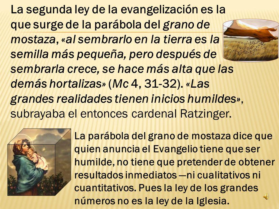 La segunda ley de la evangelización es la que surge de la parábola del grano de mostaza, «al sembrarlo en la tierra es la semilla más pequeña, pero después de sembrarla crece, se hace más alta que las demás hortalizas» (Mc 4, 31-32).