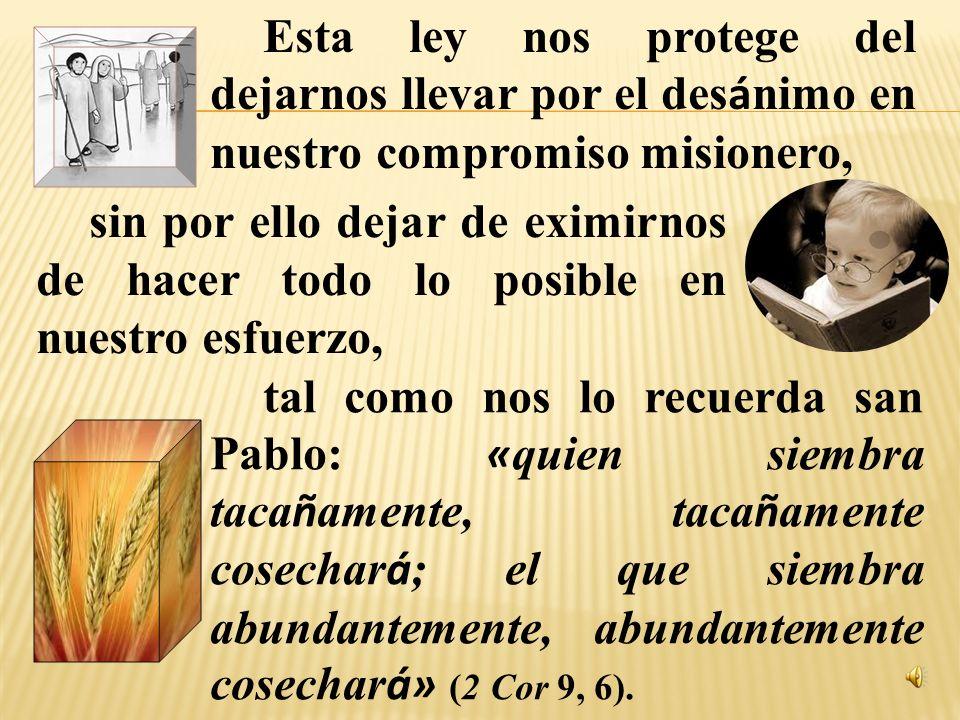 La segunda ley de la evangelización es la que surge de la parábola del grano de mostaza, «al sembrarlo en la tierra es la semilla más pequeña, pero de