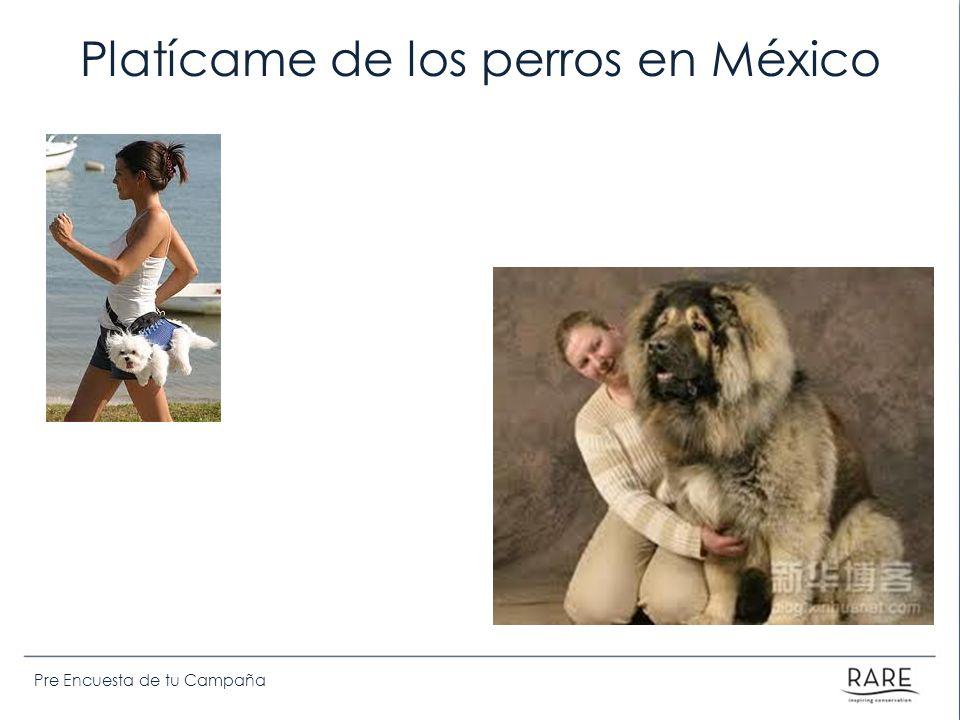 Pre Encuesta de tu Campaña Platícame de los perros en México