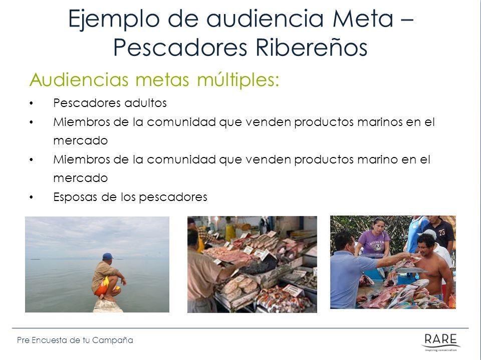 Pre Encuesta de tu Campaña Ejemplo de audiencia Meta – Pescadores Ribereños Audiencias metas múltiples: Pescadores adultos Miembros de la comunidad que venden productos marinos en el mercado Miembros de la comunidad que venden productos marino en el mercado Esposas de los pescadores