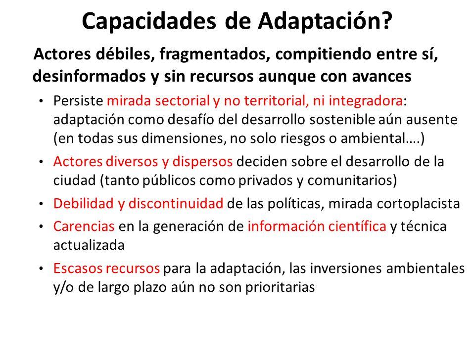 Capacidades de Adaptación? Actores débiles, fragmentados, compitiendo entre sí, desinformados y sin recursos aunque con avances Persiste mirada sector