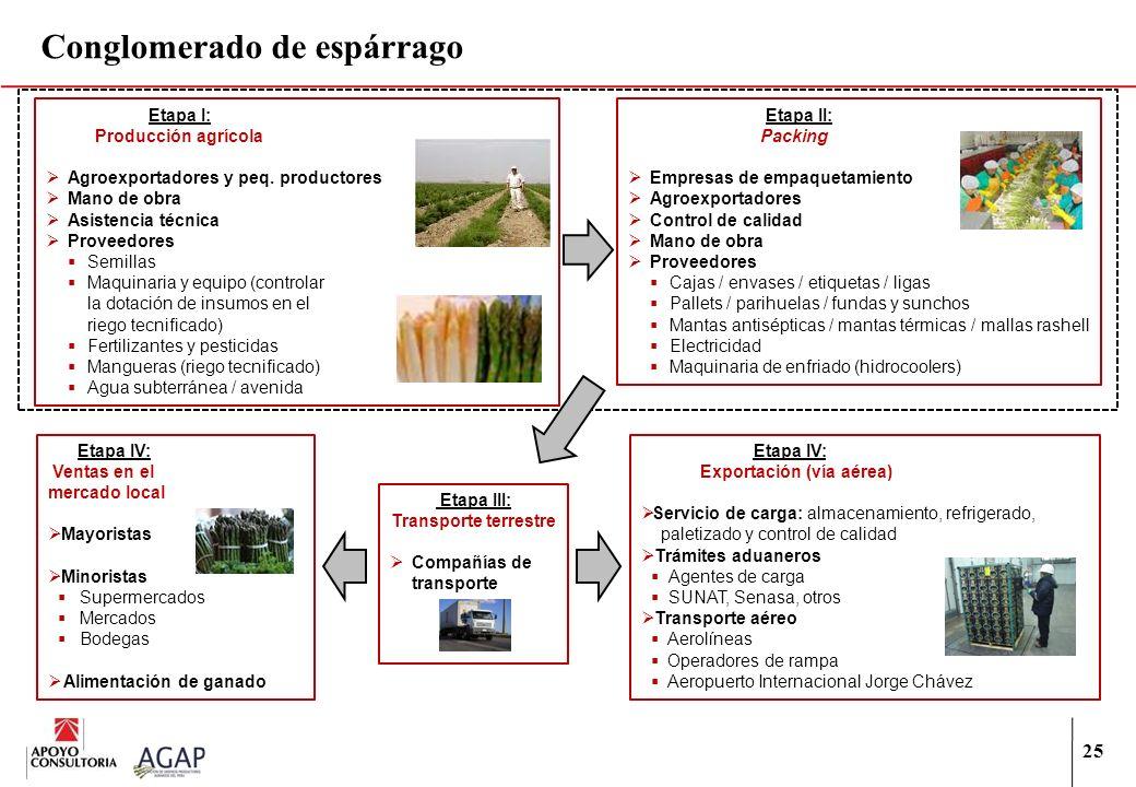 25 Conglomerado de espárrago Etapa I: Producción agrícola Agroexportadores y peq. productores Mano de obra Asistencia técnica Proveedores Semillas Maq