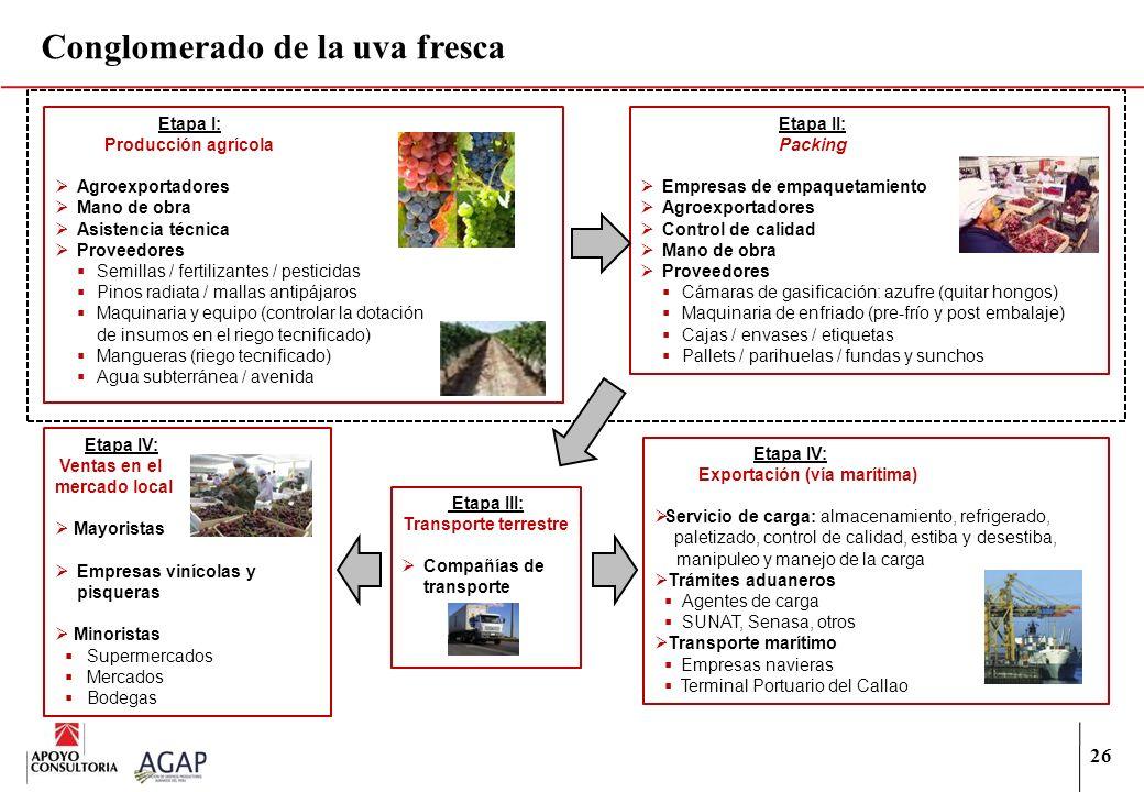 26 Conglomerado de la uva fresca Etapa I: Producción agrícola Agroexportadores Mano de obra Asistencia técnica Proveedores Semillas / fertilizantes /