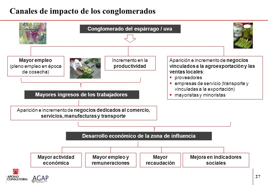27 Canales de impacto de los conglomerados Conglomerado del espárrago / uva Mayor empleo (pleno empleo en época de cosecha) Incremento en la productiv