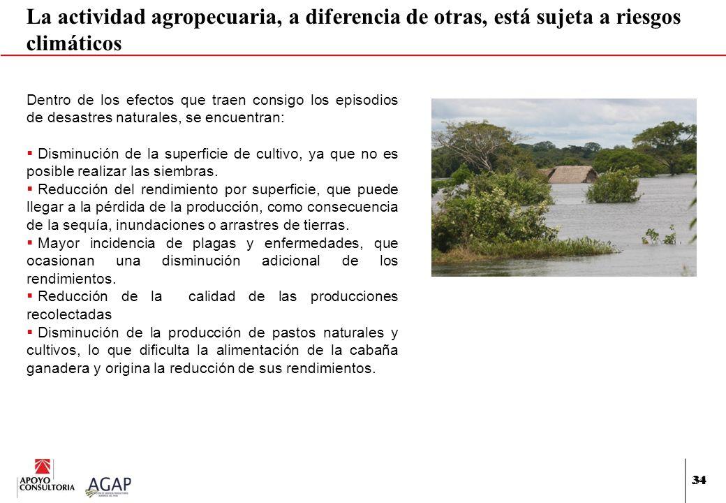 34 La actividad agropecuaria, a diferencia de otras, está sujeta a riesgos climáticos Dentro de los efectos que traen consigo los episodios de desastr