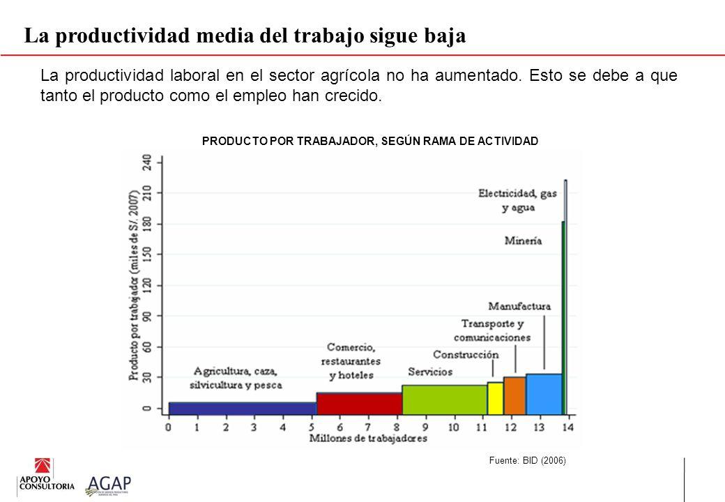 La productividad media del trabajo sigue baja Fuente: BID (2006) La productividad laboral en el sector agrícola no ha aumentado. Esto se debe a que ta