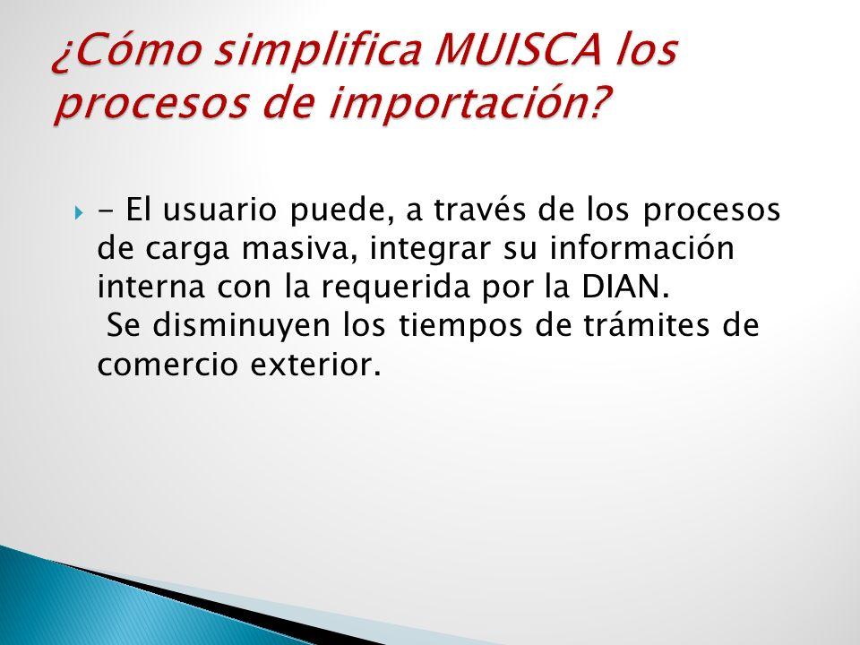 - El usuario puede, a través de los procesos de carga masiva, integrar su información interna con la requerida por la DIAN. Se disminuyen los tiempos