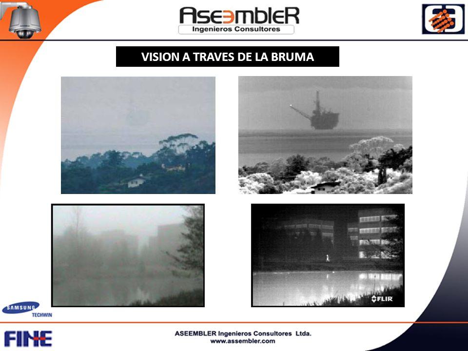 VISION A TRAVES DE LA BRUMA