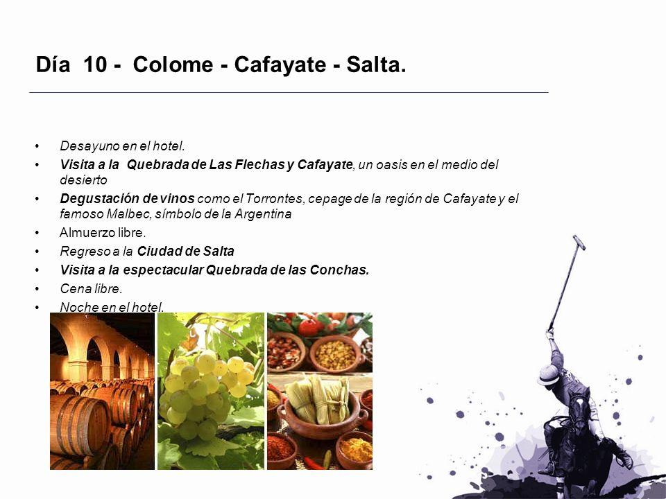 Día 10 - Colome - Cafayate - Salta. Desayuno en el hotel. Visita a la Quebrada de Las Flechas y Cafayate, un oasis en el medio del desierto Degustació
