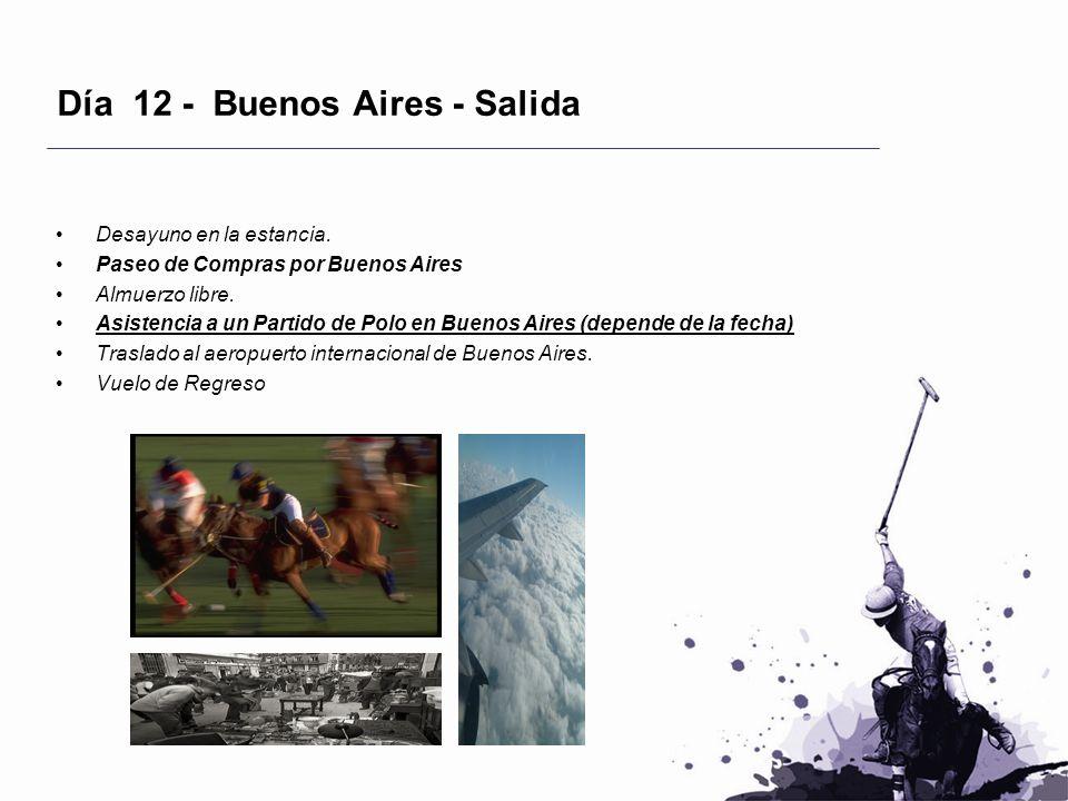 Día 12 - Buenos Aires - Salida Desayuno en la estancia. Paseo de Compras por Buenos Aires Almuerzo libre. Asistencia a un Partido de Polo en Buenos Ai
