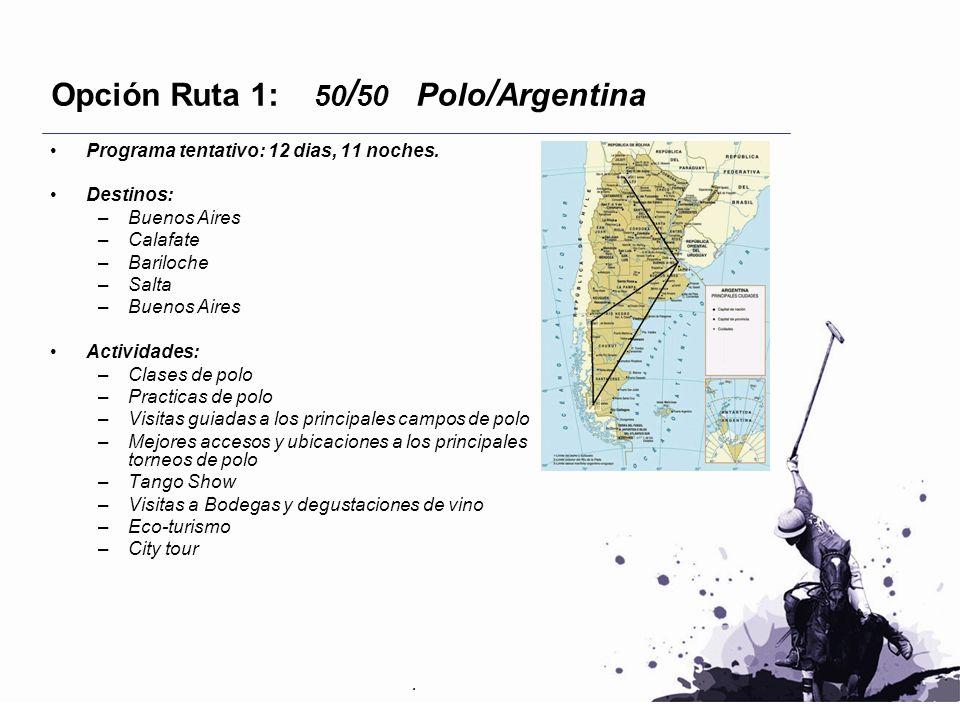 Opción Ruta 1: 50 / 50 Polo / Argentina Programa tentativo: 12 dias, 11 noches. Destinos: –Buenos Aires –Calafate –Bariloche –Salta –Buenos Aires Acti