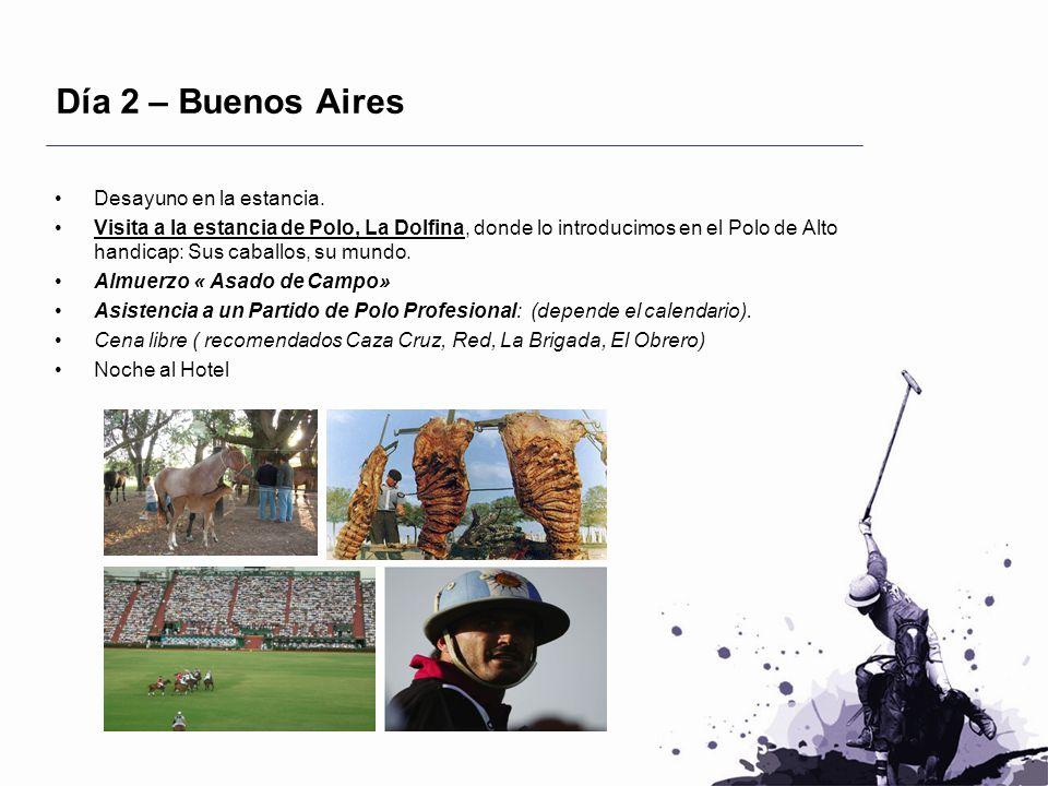 Día 2 – Buenos Aires Desayuno en la estancia. Visita a la estancia de Polo, La Dolfina, donde lo introducimos en el Polo de Alto handicap: Sus caballo