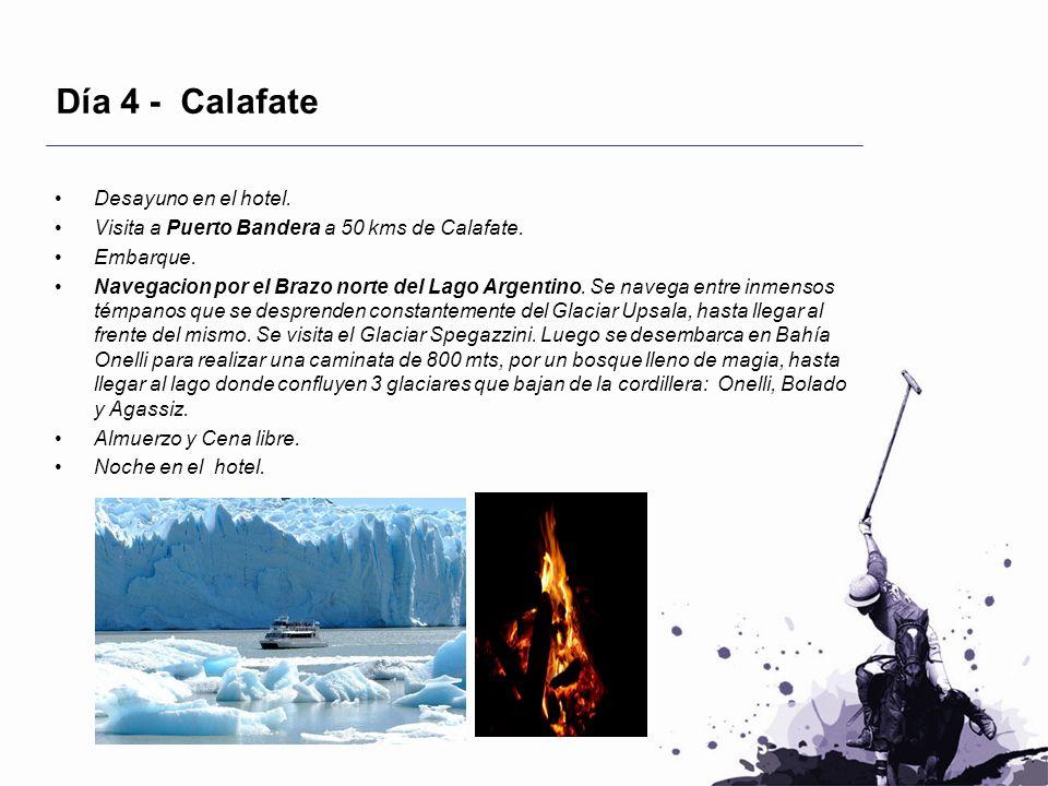 Día 4 - Calafate Desayuno en el hotel. Visita a Puerto Bandera a 50 kms de Calafate. Embarque. Navegacion por el Brazo norte del Lago Argentino. Se na