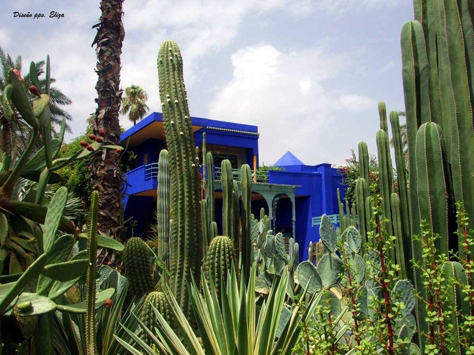 EL JARDÍN DE LA MENARA Parque de 100 hectáreas en cuyo centro se encuentra un inmenso estanque del Siglo XII y el palmeral con sus mas de 10 hectáreas de palmeras, naranjos, olivos y manzanos.