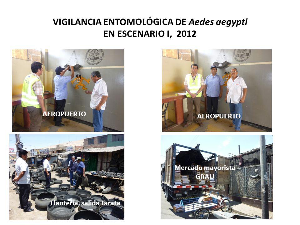 VIGILANCIA ENTOMOLÓGICA DE Aedes aegypti EN ESCENARIO I, 2012 Llantería, salida Tarata Mercado mayorista GRAU AEROPUERTO
