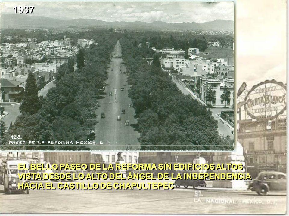 EL BELLO PASEO DE LA REFORMA SIN EDIFICIOS ALTOS VISTA DESDE LO ALTO DEL ÁNGEL DE LA INDEPENDENCIA HACIA EL CASTILLO DE CHAPULTEPEC EL BELLO PASEO DE