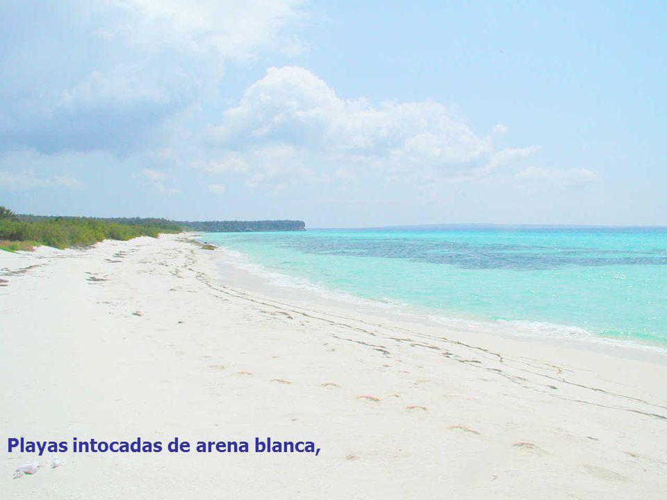 coloreado por los torrentes y ríos de montaña, Playas intocadas de arena blanca,