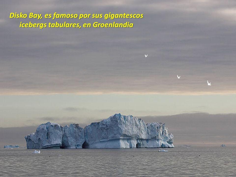 Los Gigantes en la Isla de Pascua, Chile