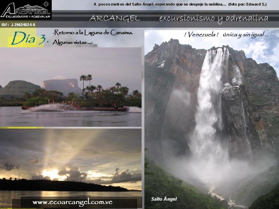 www.ecoarcangel.com.ve Un regalo de Canaima …