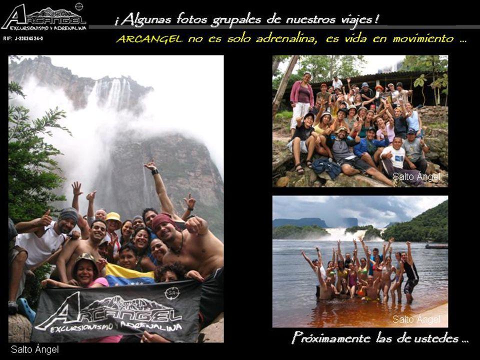 www.ecoarcangel.com.veGracias!!!.