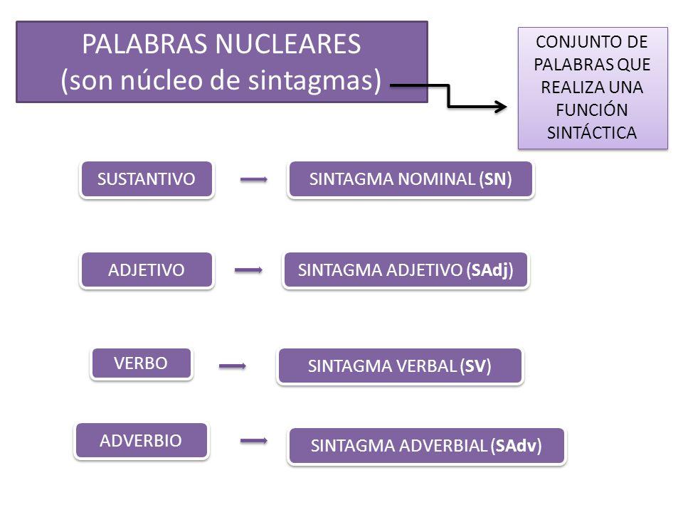 PALABRAS NUCLEARES (son núcleo de sintagmas) CONJUNTO DE PALABRAS QUE REALIZA UNA FUNCIÓN SINTÁCTICA SUSTANTIVO ADJETIVO VERBO ADVERBIO SINTAGMA NOMIN