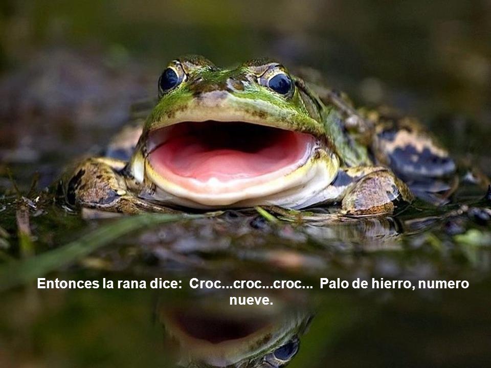 Entonces la rana dice: Croc...croc...croc... Palo de hierro, numero nueve.