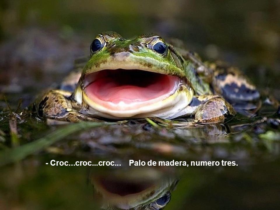 - Croc...croc...croc... Palo de madera, numero tres.