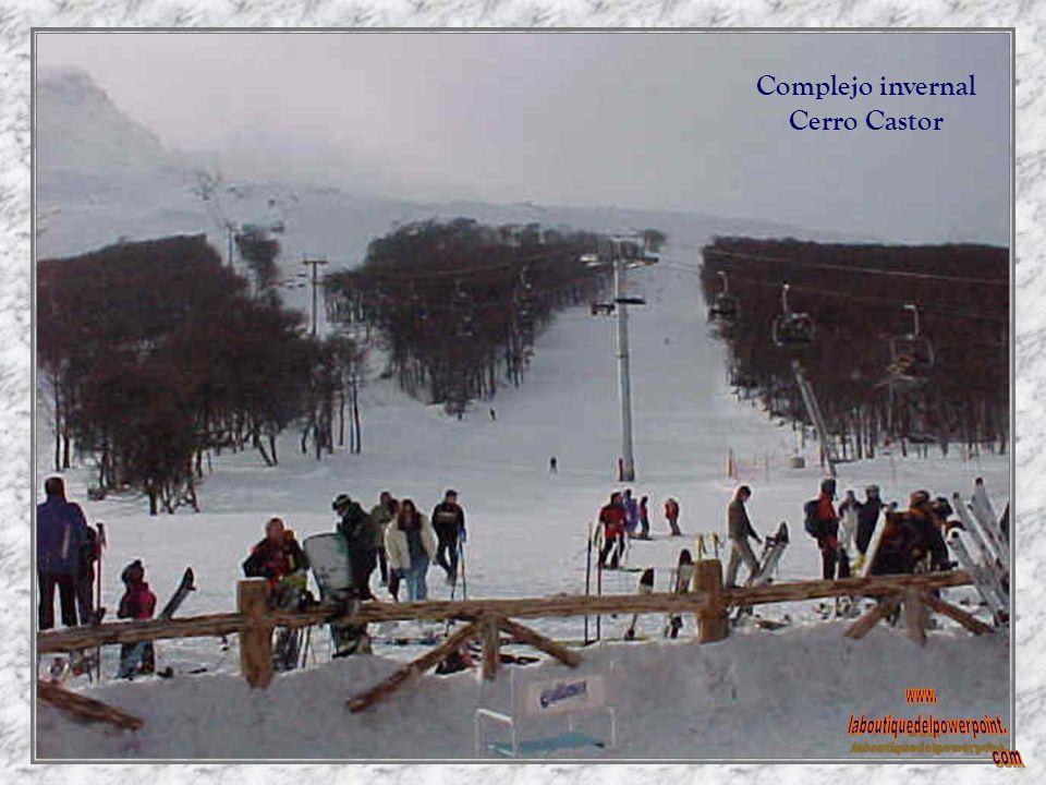 Base Cerro castor