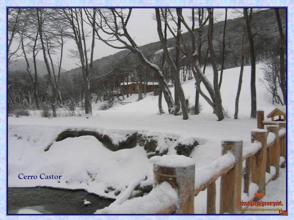 Complejo invernal Cerro Castor