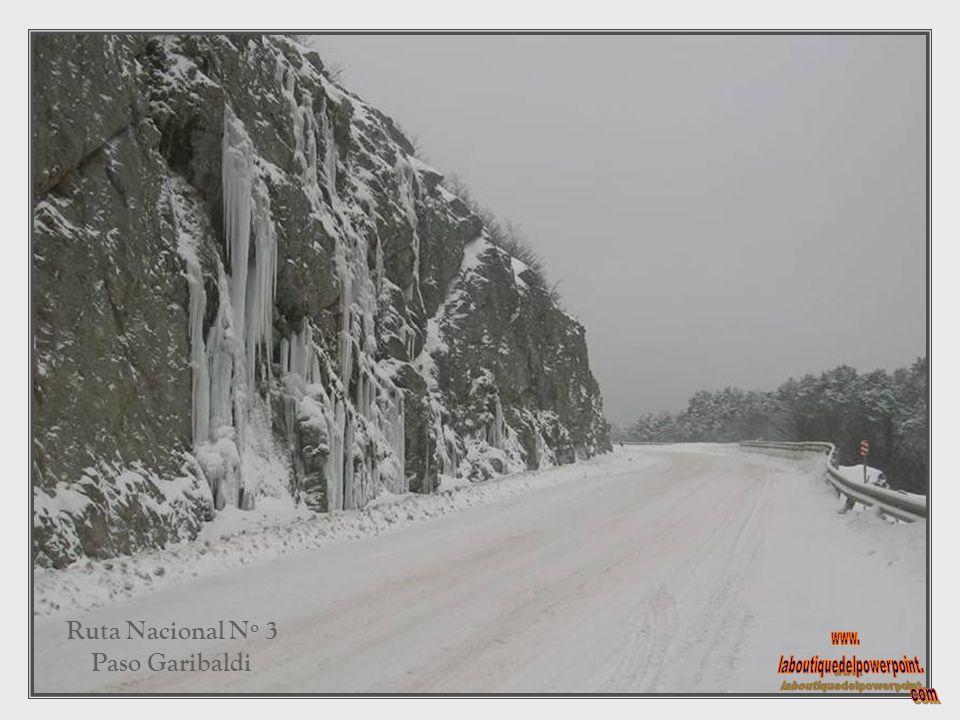 Ruta Nacional Nº 3 dentro del Parque Nacional