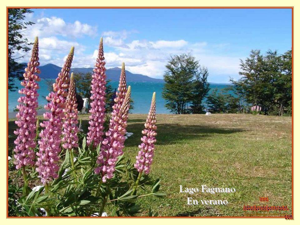 Lago Fagnano En verano Lago Fagnano En verano
