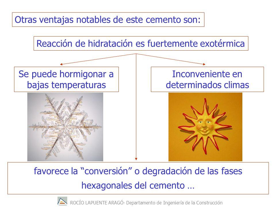ROCÍO LAPUENTE ARAGÓ- Departamento de Ingeniería de la Construcción favorece la conversión o degradación de las fases hexagonales del cemento … Otras