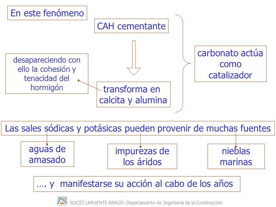 ROCÍO LAPUENTE ARAGÓ- Departamento de Ingeniería de la Construcción …. y manifestarse su acción al cabo de los años CAH cementante transforma en calci