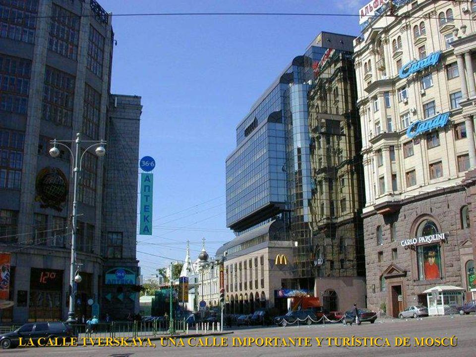 MOSCU EN LA NOCHE