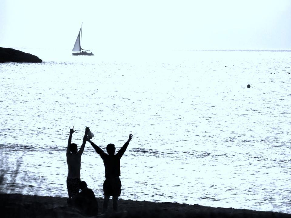 Lagartijas autóctonas que se han convertido en el icono de la isla
