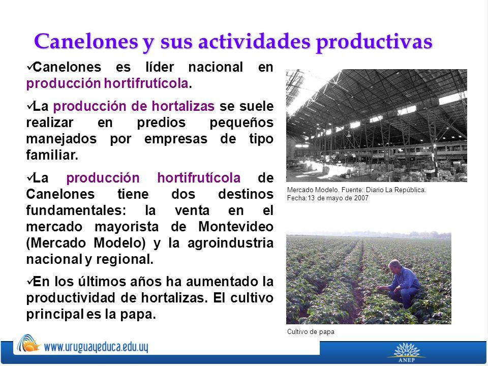 Canelones es líder nacional en producción hortifrutícola. La producción de hortalizas se suele realizar en predios pequeños manejados por empresas de